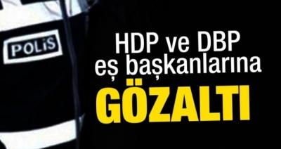 HDP'li başkan yardımcısı ve DBP eş başkanı gözaltında