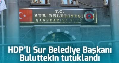 HDP'li Sur Belediye Başkanı Buluttekin tutuklandı