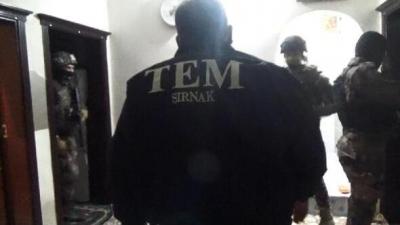 İdil'de PKK/KCK operasyonu: 4 gözaltı
