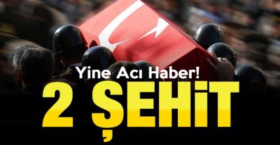 İdil'de PKK'lılarca  tuzaklanan el yapımı patlayıcı infilak etti: 2 şehit, 7 yaralı
