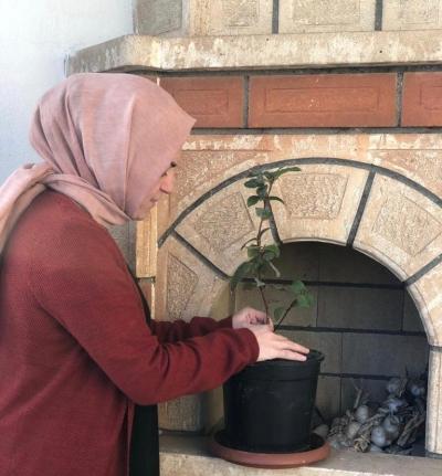 Şırnak AK Parti Kadın Kolları Yönetimi Tohum Ve Fideleri Toprakla Buluşturdu.