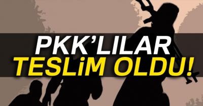 Şırnak'ta 4'ü kadın 6 PKK'lı teslim oldu