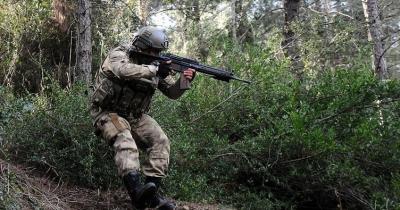 Şırnak'ta iki PKK'lı etkisiz hale getirildi
