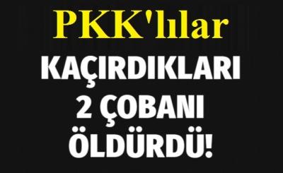 Şırnak'ta PKK'lılar  2 çobanı öldürdü