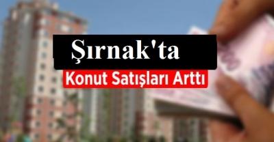 Şırnak'ta şubat ayında konut satışları yüzde 8,8 arttı
